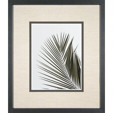 <strong>Phoenix Galleries</strong> Palm Leaf 1 Framed Print
