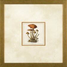 Small Mushrooms 2 Framed Print