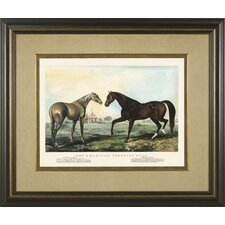 <strong>Phoenix Galleries</strong> Trotting Stud 2 Framed Print