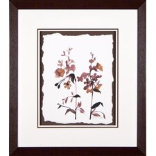<strong>Phoenix Galleries</strong> Wildflowers 6 Framed Print