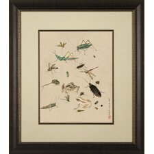<strong>Phoenix Galleries</strong> Insects Framed Print