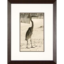 <strong>Phoenix Galleries</strong> Watching for Fish Framed Print