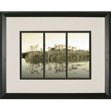 Sunrise Grasses Framed Print
