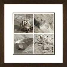 <strong>Phoenix Galleries</strong> Shell Quartet Framed Print