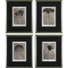 <strong>Phoenix Galleries</strong> Silver Stem Framed Prints