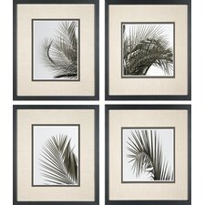 <strong>Phoenix Galleries</strong> Palm Leaf Framed Prints