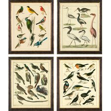 <strong>Phoenix Galleries</strong> Aviary on Canvas Framed Prints