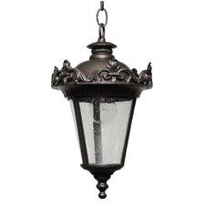 Parisian PE3900 Series 1 Light Hanging Lantern
