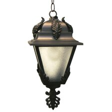 Parisian PE1700 Series 1 Light Hanging Lantern