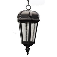 Kiss Series 1 Light Outdoor Hanging Lighting
