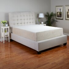 "Rapture 12"" Memory Foam Mattress"