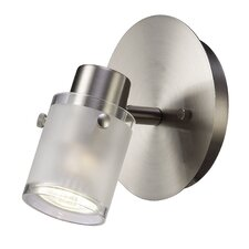 Cole 1 Light Ceiling/Wall Light