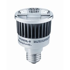 Acculamp LED Lamp 8W LED Light Bulb