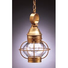 Onion 13' Medium Base Socket Caged Pendant