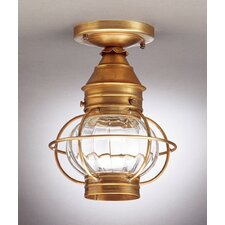 Onion Socket Caged Semi Flush Mount