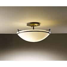 Small Plain 2 Light Semi Flush Mount in Dark Smoke