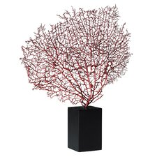 Sea Fan Sculpture with Base