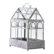 Terrarium Plant Container