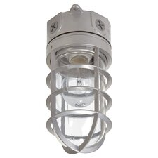 Incandescent Vapor Tight Floodlight