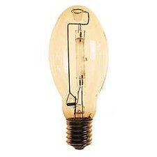 Deluxe Mercury Vapor Light Bulb