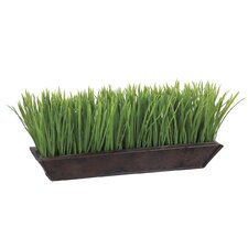 Grass in Rectangular Metal Planter