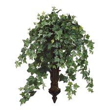 Ivy Hanging Plant in Basket