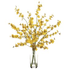 Oncidium in Glass Vase
