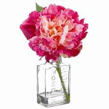 Peony in Glass Vase (Set of 12)