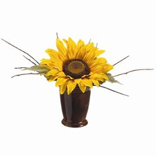 Sunflower/Twig in Ceramic Pot