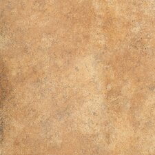"Sumatra 18"" x 18"" Field Tile in Giambi"