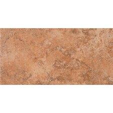 "Tosca 6 -1/2"" x 13"" Modular Tile in Amber"