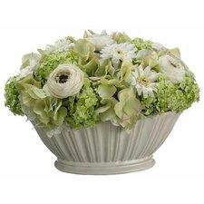 Ranunculus / Daisy / Hydrangea in Bowl