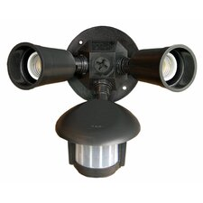 Motion Activated Twin Par Light