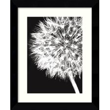 'Dandelion Crop' by Jenny Kraft Framed Photographic Print