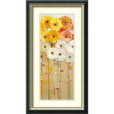 'Daisies Fall I' by Danhui Nai Framed Painting Print