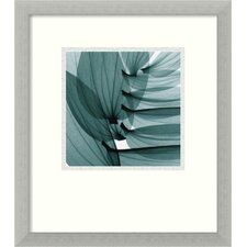 'Lily Leaves' by Steven N. Meyers Framed Photographic Print