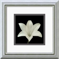 'Flower Series VII' by Walter Gritsik Framed Photographic Print