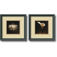 'Flower Series' by Walter Gritsik 2 Piece Framed Photographic Print Set