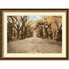 'Central Park I' by Timothy Wampler Framed Art Print