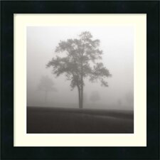 "<strong>Amanti Art</strong> Fog Tree Study I by Jamie Cook, Framed Print Art - 16.19"" x 16.19"""