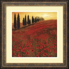 "<strong>Amanti Art</strong> Poppies by Steve Thoms, Framed Print Art - 17.93"" x 17.93"""