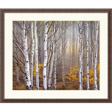 "<strong>Amanti Art</strong> Aspen in Fog by Charles Cramer Framed Fine Art Print - 32.30"" x 38.30"""