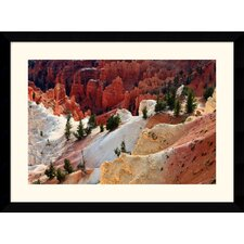 "Cedar Breaks National Monument by Andy Magee Framed Fine Art Print - 28.62"" x 38.62"""