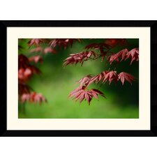 "Japanese Garden by Andy Magee Framed Fine Art Print - 28.62"" x 38.62"""