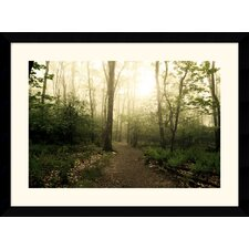 "<strong>Amanti Art</strong> Appalachian Trail by Andy Magee Framed Fine Art Print - 28.62"" x 38.62"""