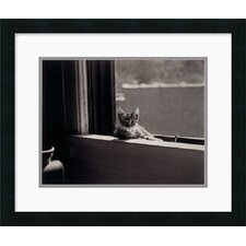 "<strong>Amanti Art</strong> Kitty in the Window by Jim Holmes Framed Fine Art Print - 17.5"" x 20.75"""