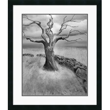 "<strong>Amanti Art</strong> The Meadow by Ellen Fisch Framed Fine Art Print - 27"" x 23"""