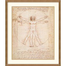 <strong>Amanti Art</strong> Proportions of the Human Figure (Vitruvian Man) Framed Print by Leonardo da Vinci