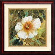 <strong>Amanti Art</strong> White Magnolia II Framed Print by Danson