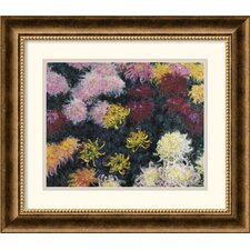 <strong>Amanti Art</strong> Chrysanthemum, 1897 Framed Print by Claude Monet